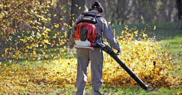 Quelle est la meilleure souffleuse à feuilles au Canada