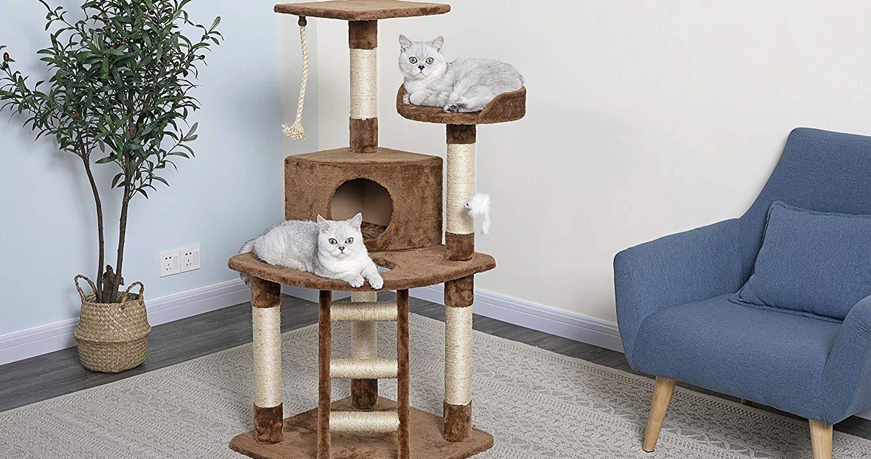 Comment choisir un arbre à chat