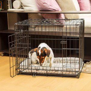 Comment choisir une Cage pour chien